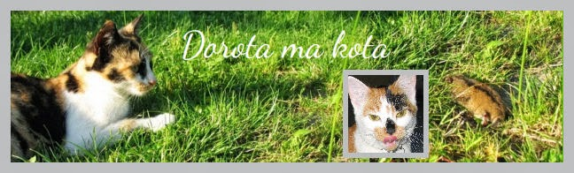 http://dorotamakota.blogspot.com/