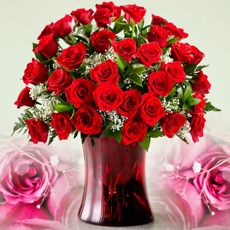 Happy Birthday Wallpaper With Red Rose Happy Rose Day 2015 Wallpapers