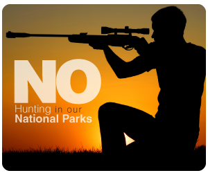 No Hunting in National Parks