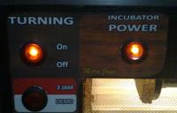 panel fullauto