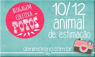 http://www.danimoreno.com.br/2013/12/bcfotos-animal-de-estimacao.html