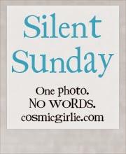 www.cosmicgirlie.com