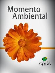 Momento Ambiental/Vídeos