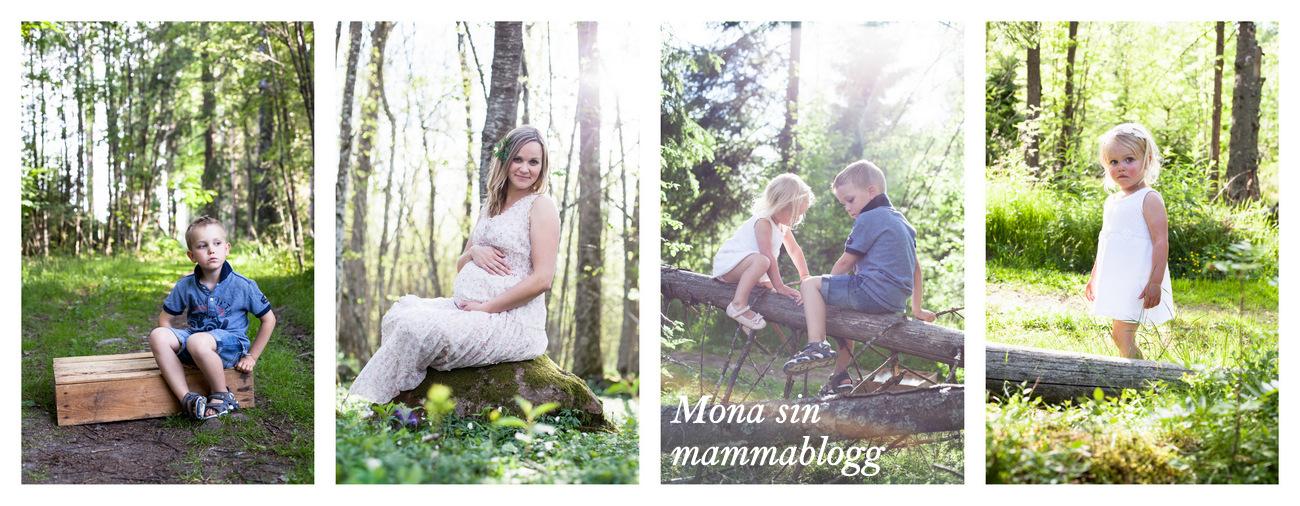 mona sin mammablogg