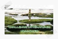 http://paysdecoeuretpassions.blogspot.ca/2013/04/ou-en-suis-je-dans-mes-challenges.html