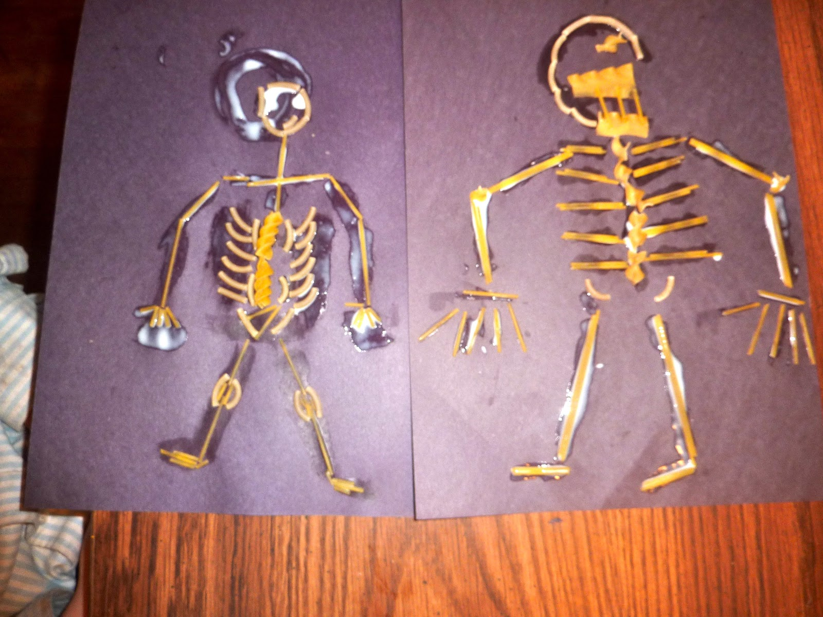 Anatomy Skeletal System Games Gallery Human Body Anatomy