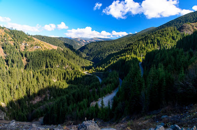 Drum forestier paralel cu Lotru dupa barajul Vidra