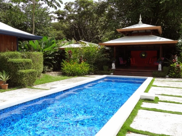 One of the coolest lap pools I've seen - Blue Osa - Costa Rica