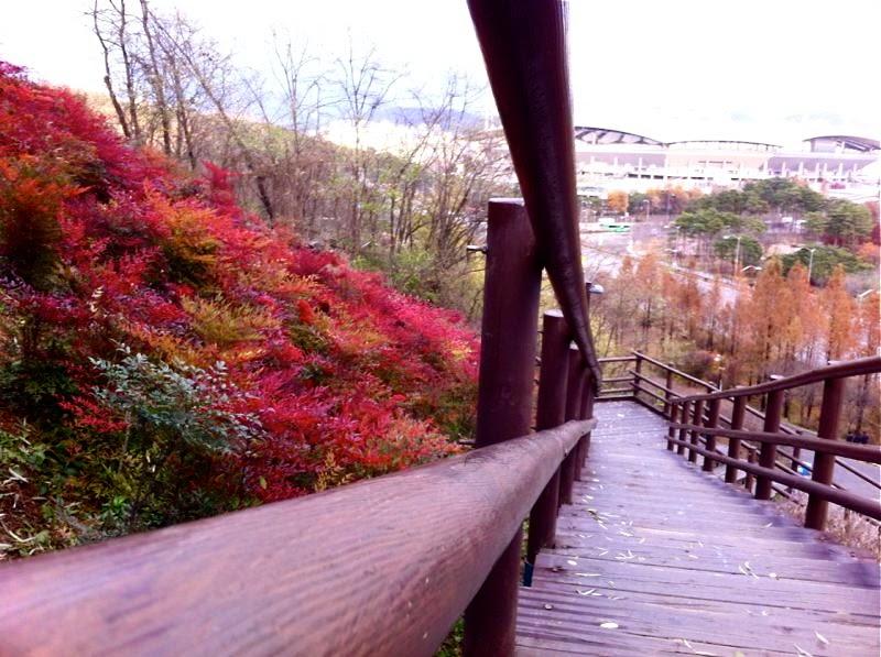 autumn haneul park seoul korea