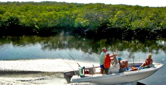 John Pennekamp Corel Reef State Park, Key Largo Florida USA