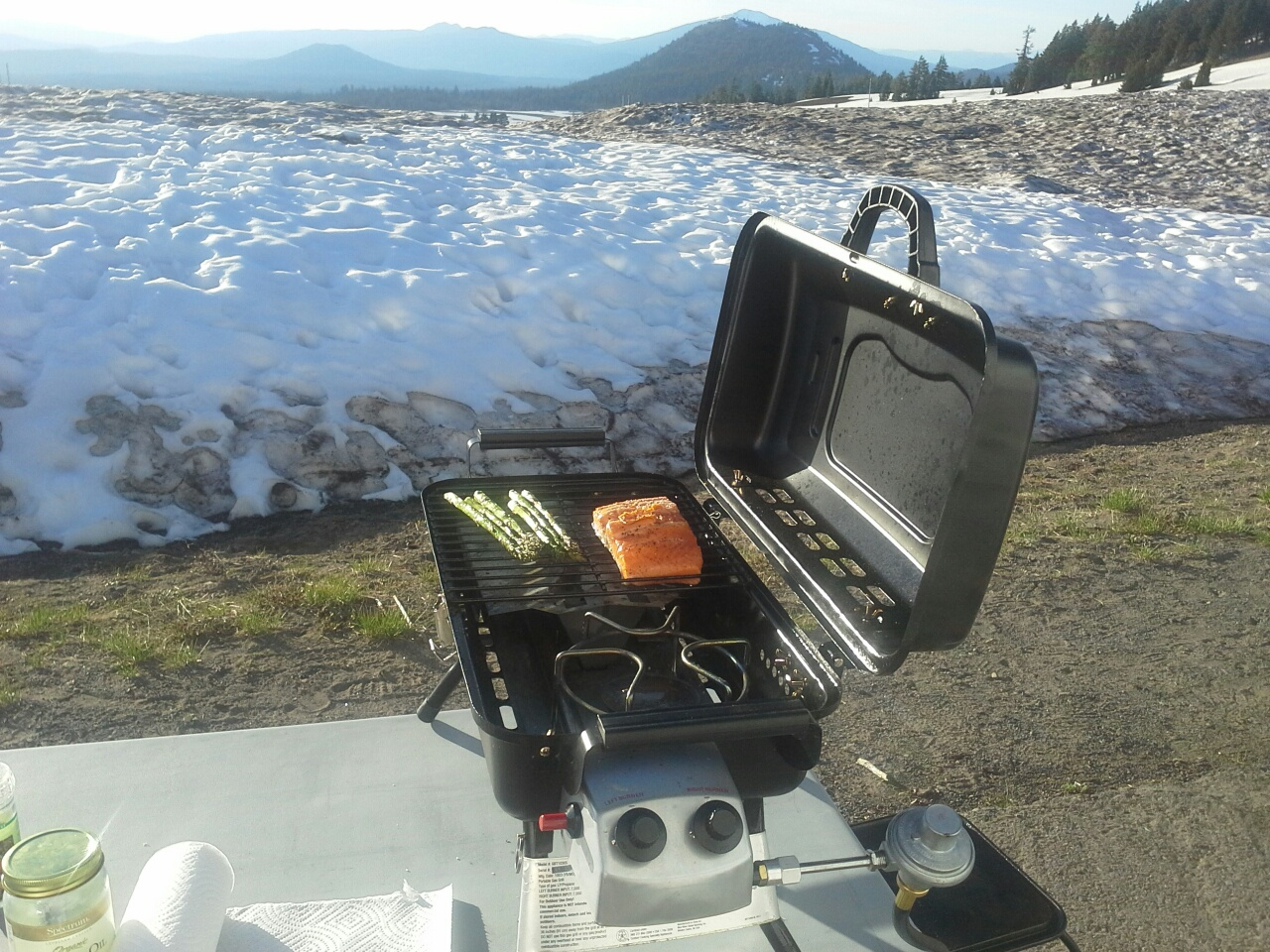 Chinook salmon, King salmon, Springer, Crater Lake