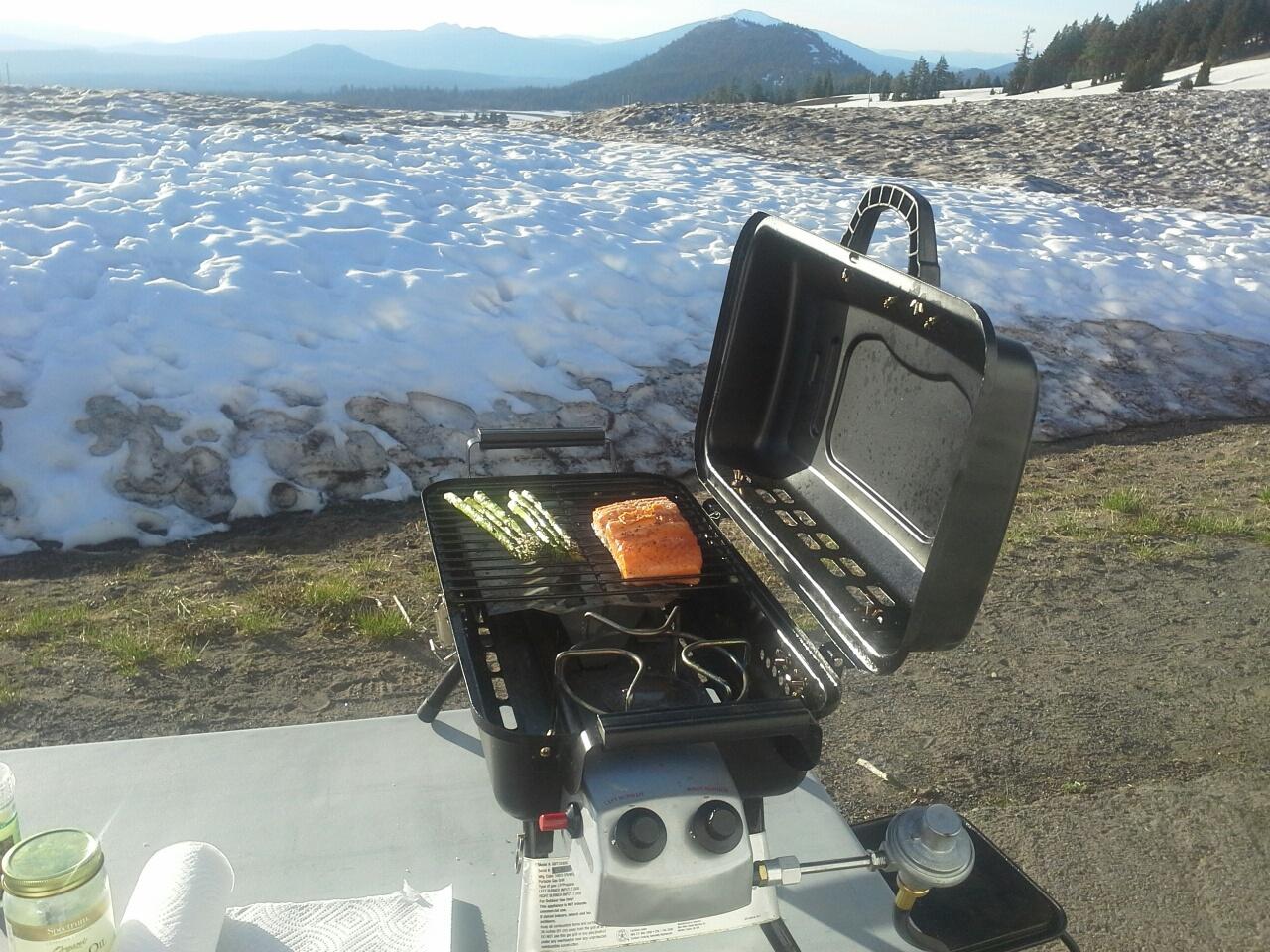 Chinook salmon, King salmon, Springer, Crater Lake
