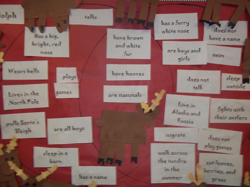 Mrs Woods Kindergarten Class Reindeer Venn
