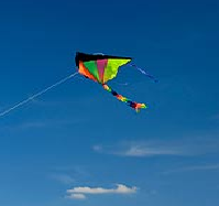 short essay on kite flying Jal hi jivan hai (water is life ) par hindi mein 200 words ka essay pragya744 what is alankar in hindi grammar and its types with examplesplease tell m e the ans.