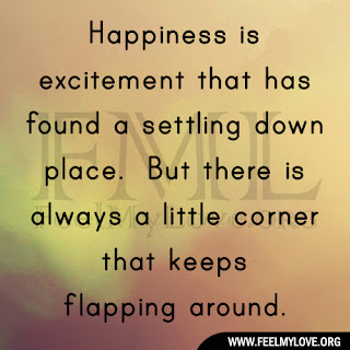 Happiness is excitement