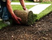 Scottsdale Landscape Contractors