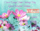 Special Mention Winner 31-07-2019