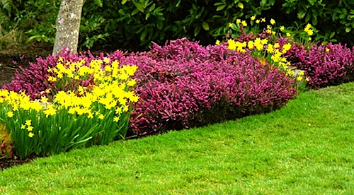 Lawn and garden maintenance tips leovan design for Garden maintenance tips