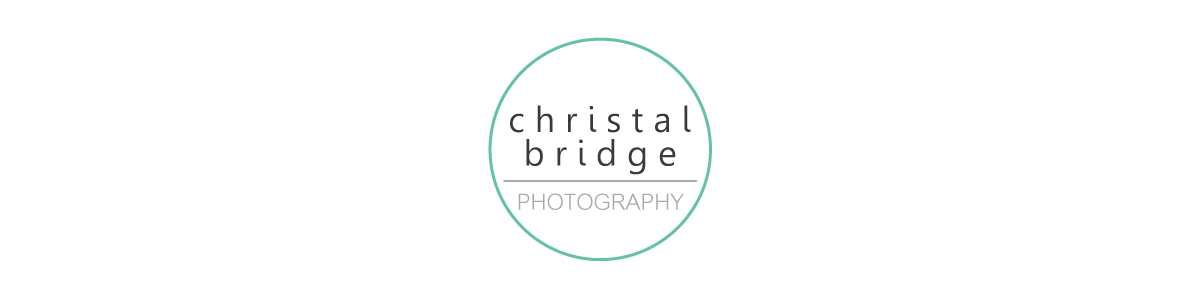 Christal Bridge Photography/St. Louis Photographer