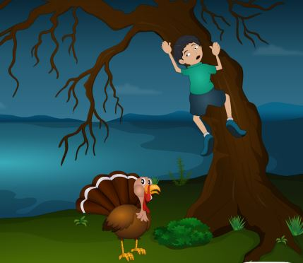 TollFreeGames Small boy and Turkey