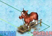 كود الحصان الاحمر
