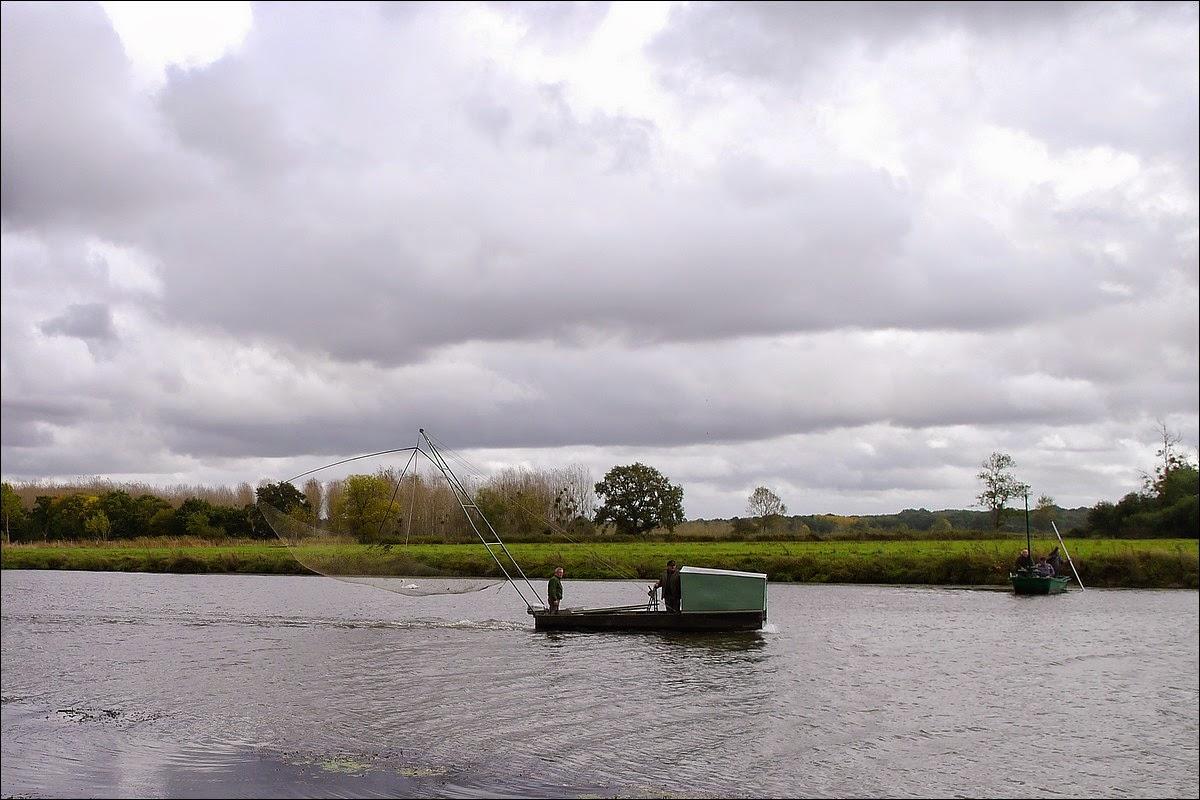 pêche au carrelet sur la vilaine