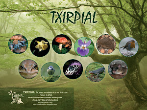 txirpial biodiversa