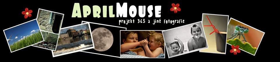Aprilmouse - projekt 365