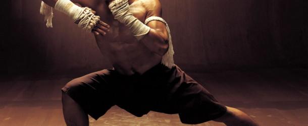 Entrenamiento de 8 semanas para artes marciales (nivel intermedio-avanzado)