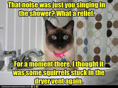that-noise-was-just-you-singing-in-the-s