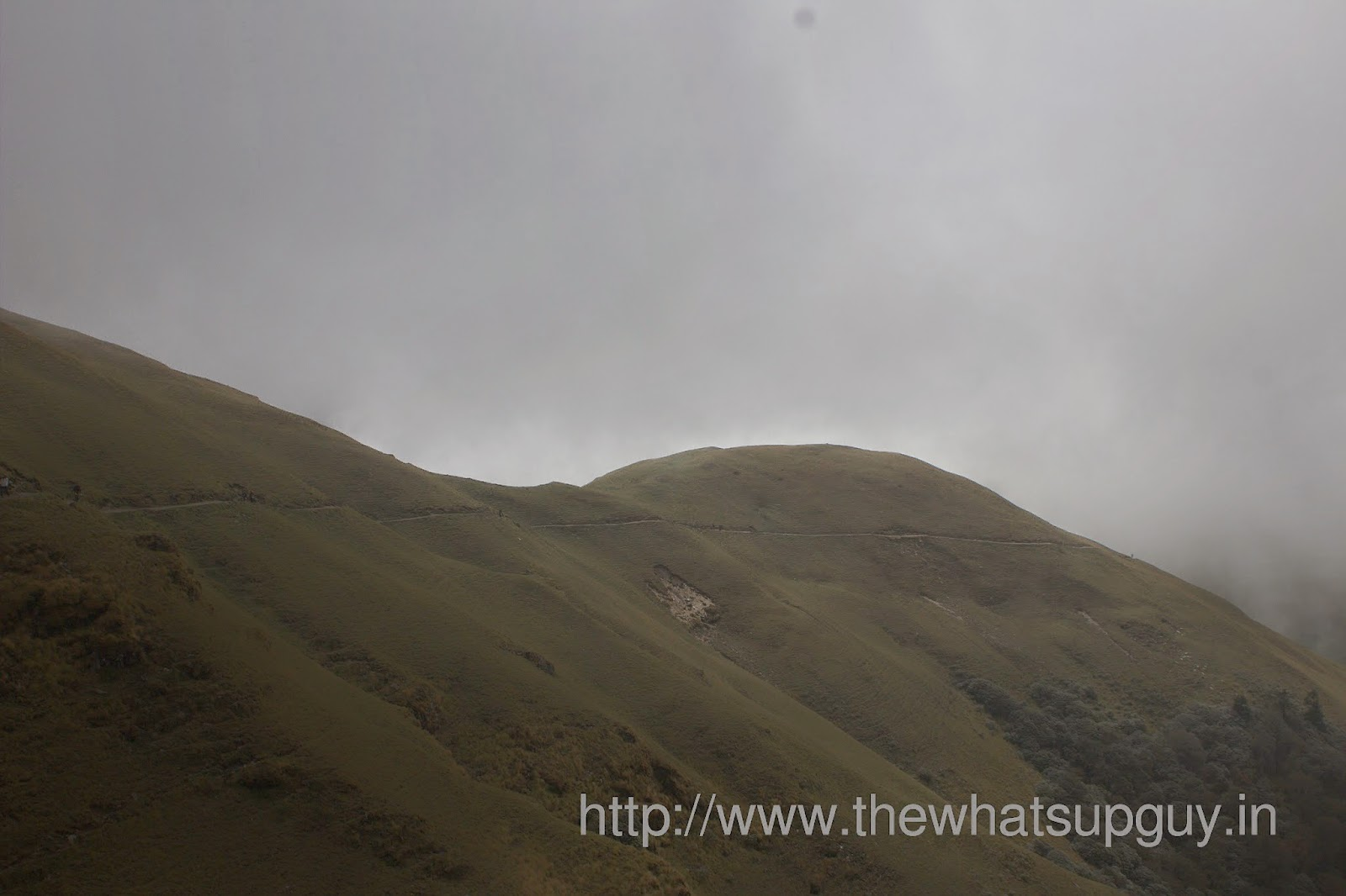 Bedini-Bugyal-Trail-Roopkund-Trek-With-India-Hikes-Day-2