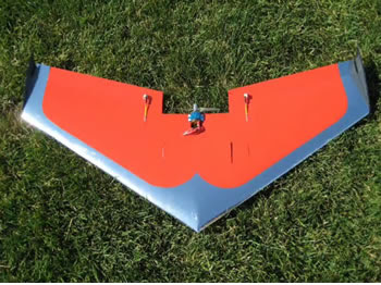 RC Wing Images