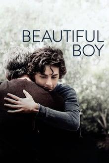 Watch Beautiful boy Online Free in HD