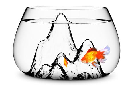 Fish Bowl Drink