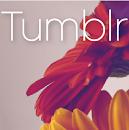 Designer Island Tumblr