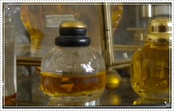 usaha bibit parfum