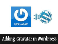 Gravatar in WordPress