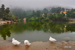 Ιπποκρατειος πολιτεια ,λιμνη,φωτο Κώστας Λαδάς