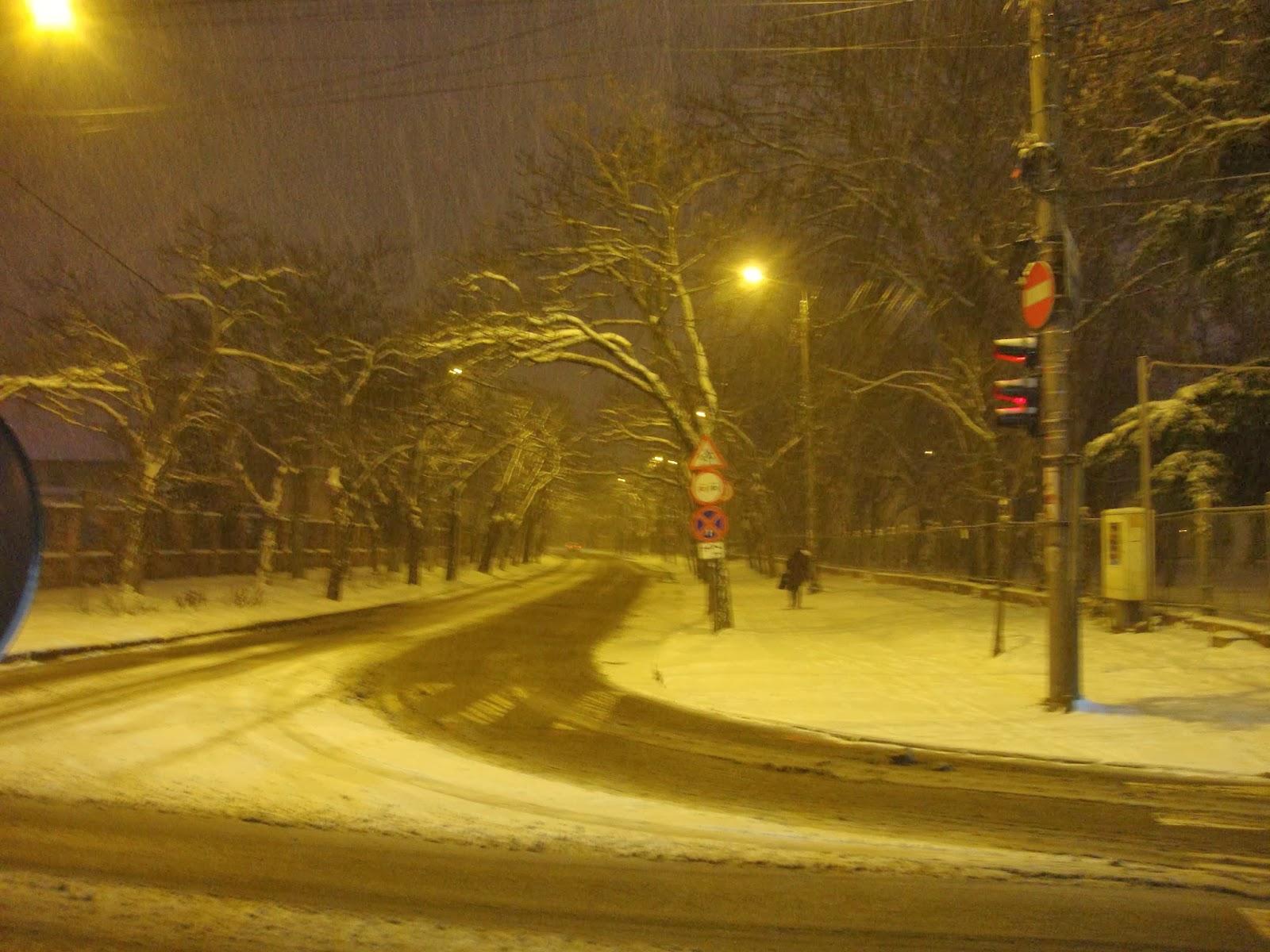 Timisoara iarna - Parcul Justitiei