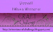 I won at C.R.A.F.T. Challenge