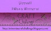 I won at C.R.A.F.T. Challenge