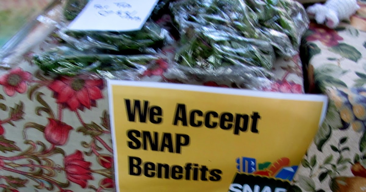 Food Stamps Abq