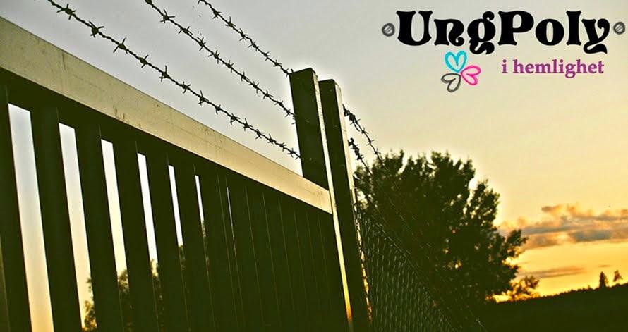 UngPoly