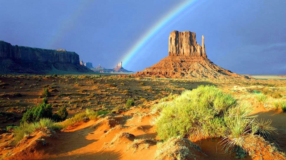 rainbow-dash-wallpaper