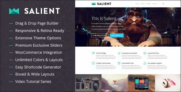 Salient Responsive WP Themes
