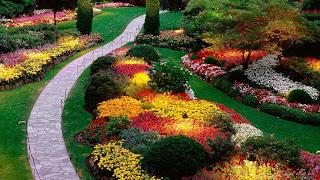 Busch Gardens Tampa Bay (Best Honeymoon Destinations In USA) 9