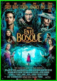 En El Bosque 2014   DVDRip Latino HD Mega