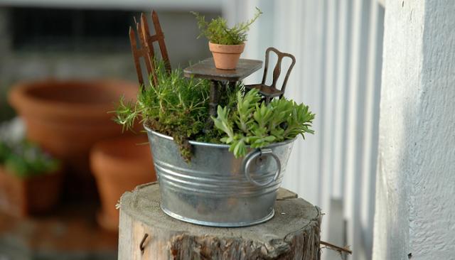 mini jardins em vaso:Vasos são transformados em mini jardins [fotos] – Ideias Green