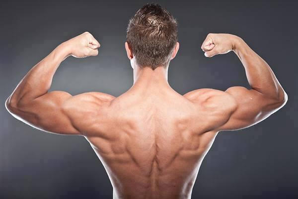 musculation du dos exercices pour muscler le dos sports et sant. Black Bedroom Furniture Sets. Home Design Ideas