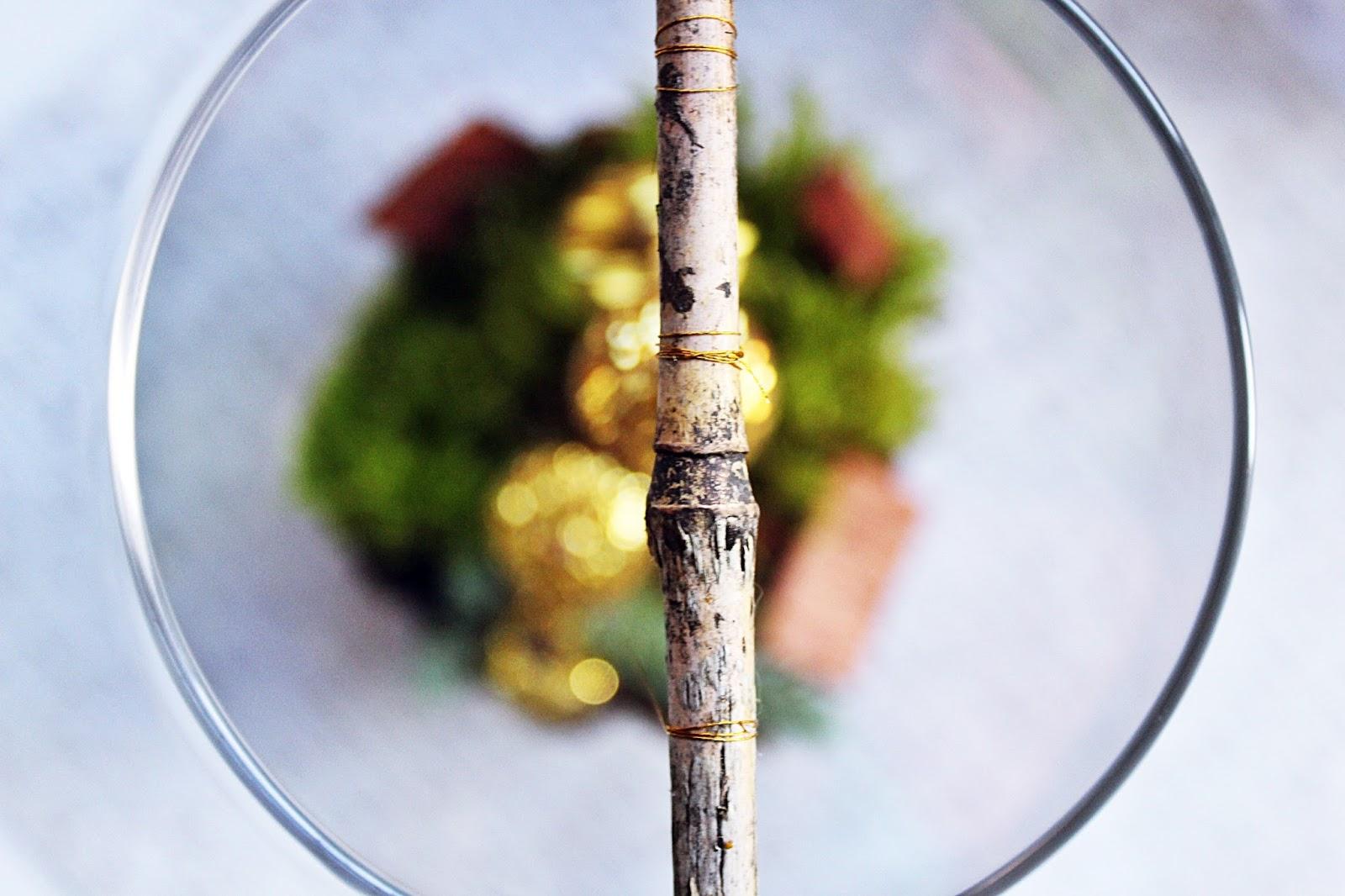 ogródek w wazonie